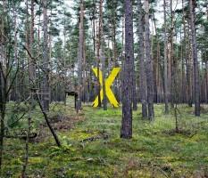 Gorleben, Castor, Demonstration, Wald, Kreuz
