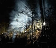 Gorleben, Castor, Demonstration, Nacht, Polizei, Licht